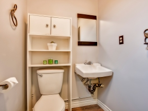 185-thaler-avenue-super-cute-kitchener-condo-power-room